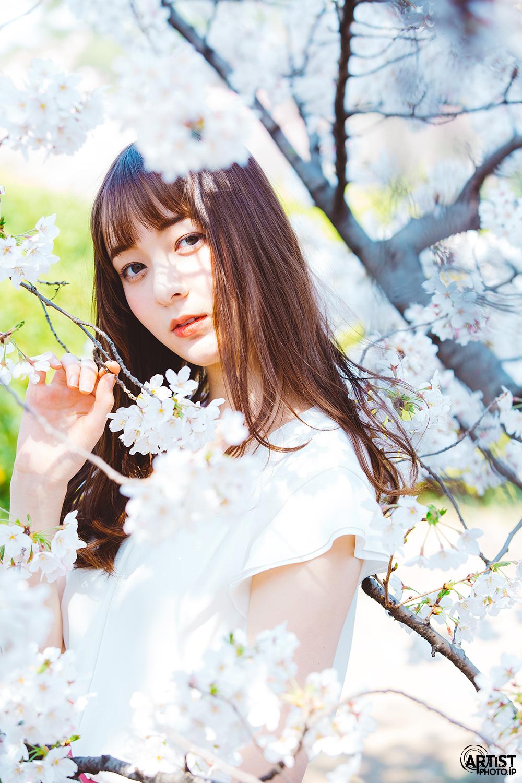 アー写モデル アリーナ x 桜