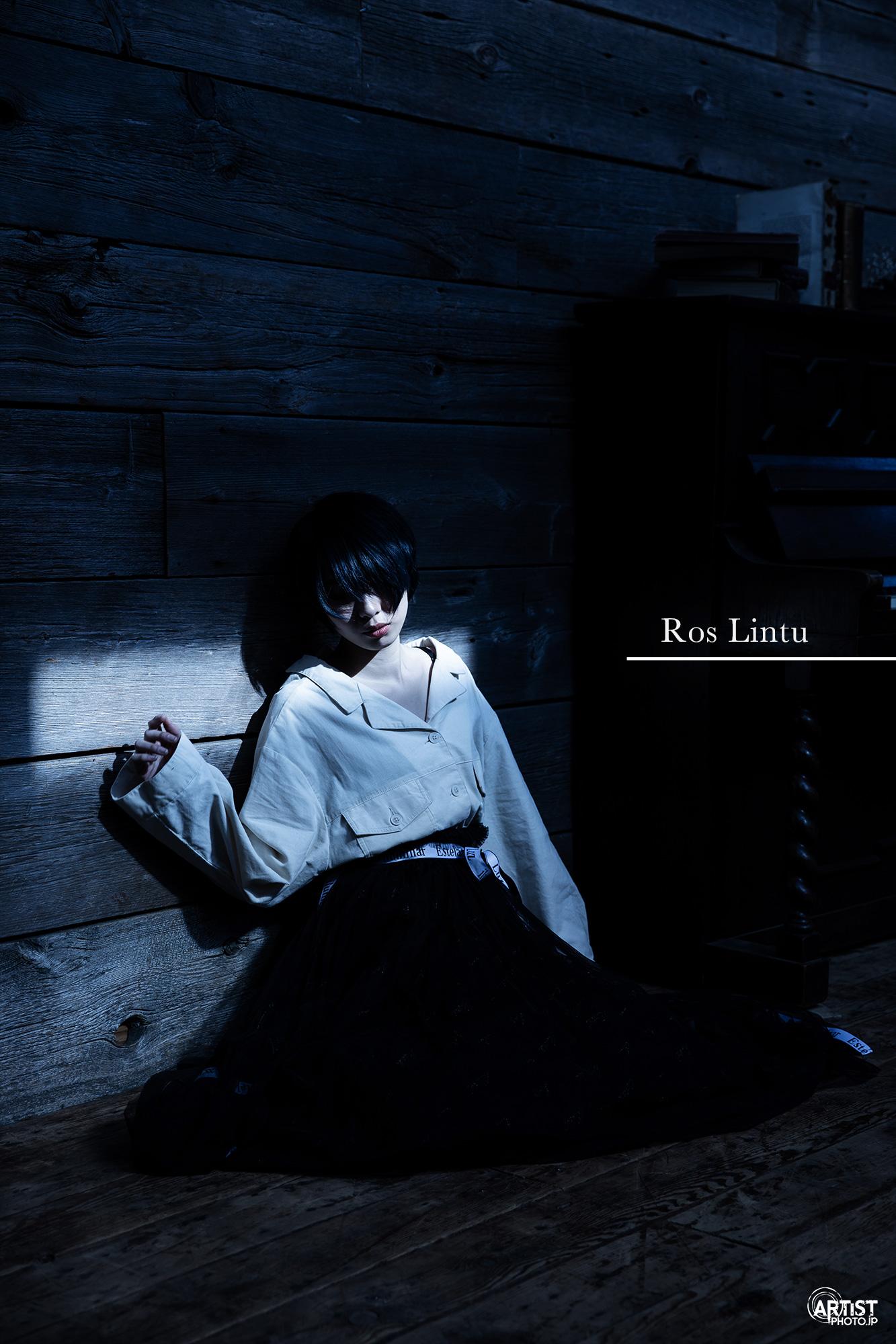 Ros Lintuアーティスト写真