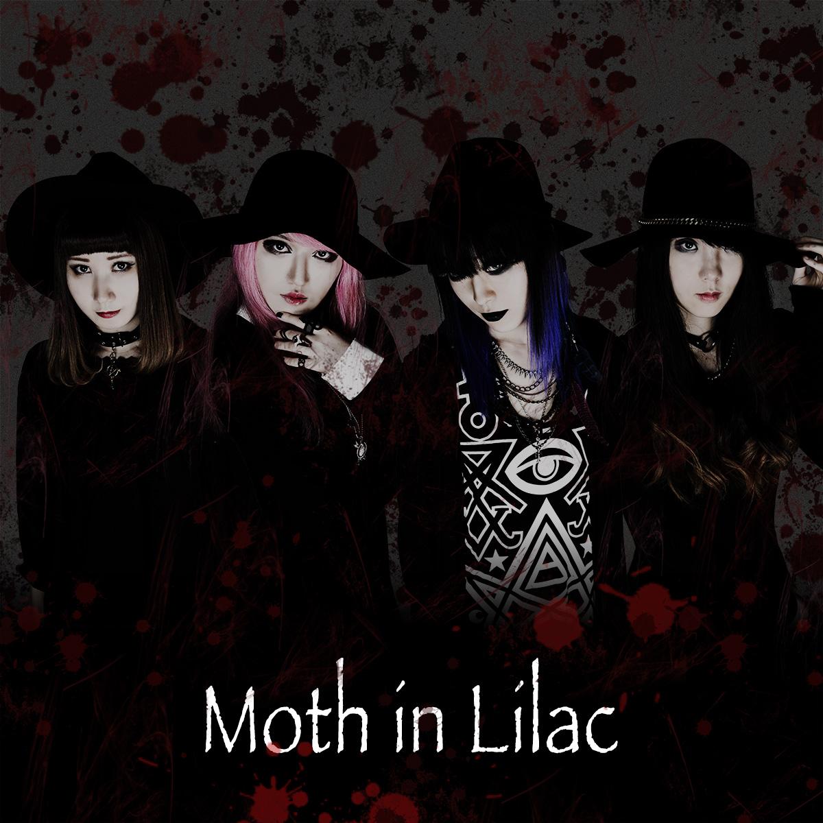 Moth in Lilacのアーティスト写真